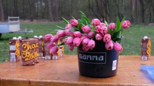 Tulpen voor in het vuur